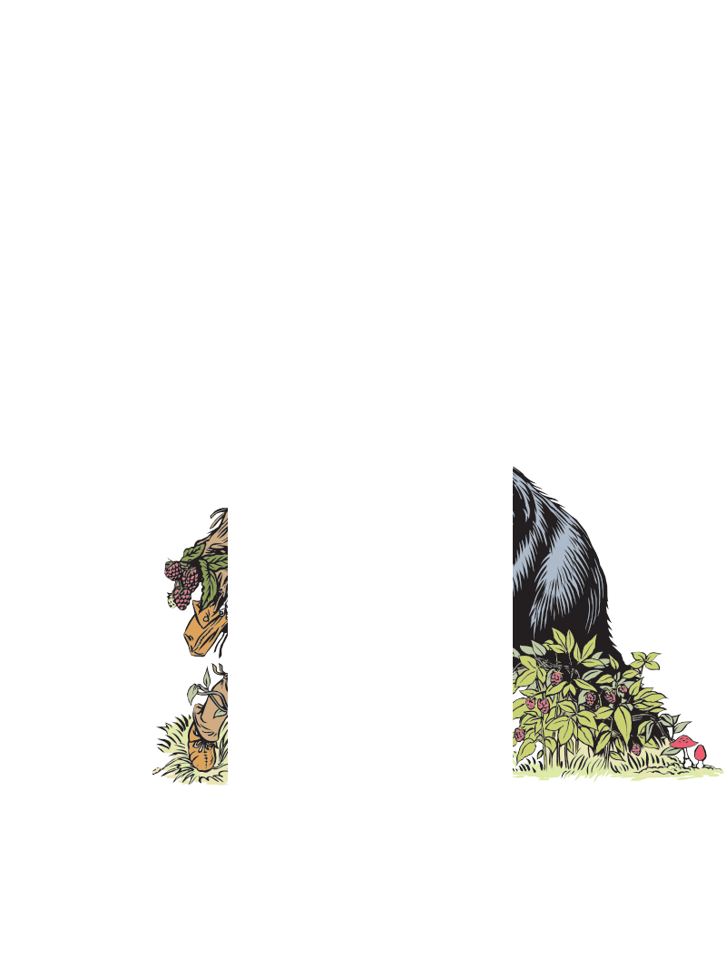 Cowsure Framboise