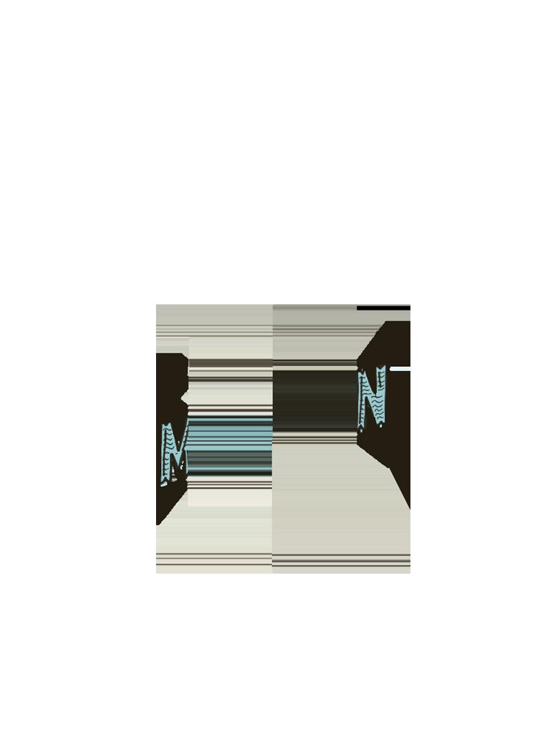 Matawin Bruxellensis